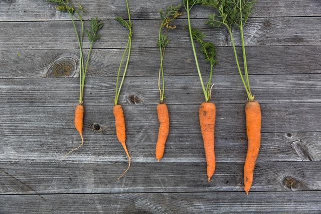 Få friske grøntsager med en køkkenhave
