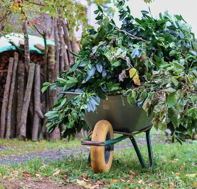 Sådan gør du din have vinterklar