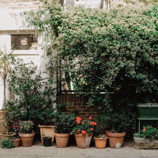 Tips til hvordan du kan føle dig mere tryg i din have